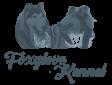 Foxglove Kennel website logo